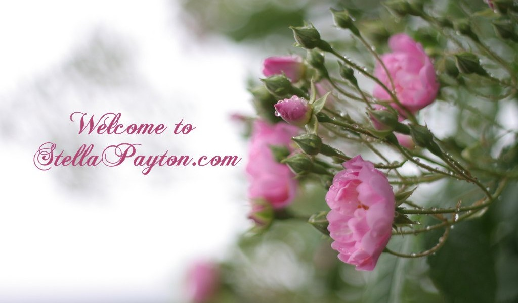 welcome to stellapayton.com